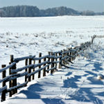 winter_150